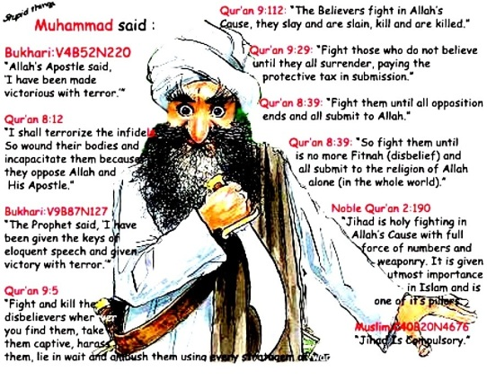 Image result for freedom of speech danish cartoons islam